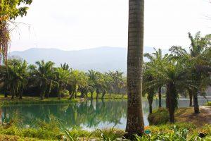 Yunshanshui, East Rift Valley, Hualien Tour