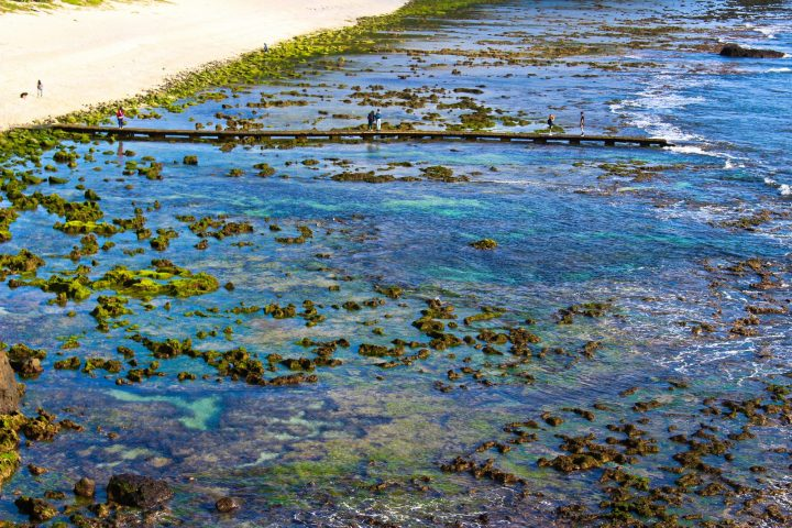 Stunning Green Island Tidal Pools