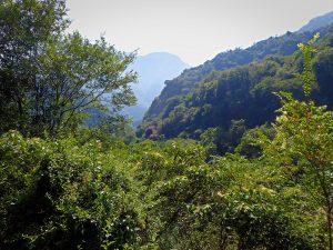 Lushui-Wenshan Trail