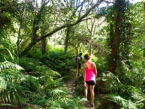 Lushui-Wenshan Trail in Taroko Gorge NP