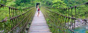 Fuyuan Forest Suspension Bridge