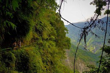 walami trail
