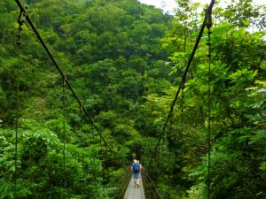 Suspension Bridge, Taroko Gorge National Park