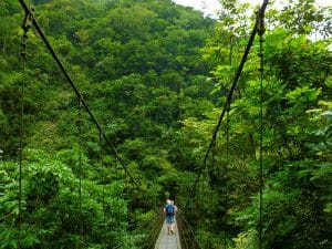 Suspension Bridge, Taroko Gorge National Park